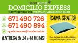 Folleto actual Tiendanimal - 21.4.2020 - 27.4.2020.
