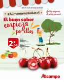 Folleto actual Alcampo - 19.5.2020 - 25.5.2020.