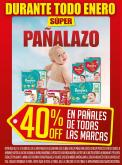 Folleto actual Dia - 1.1.2019 - 31.1.2019 - Ventas - huggies, tena, pampers, pañales.