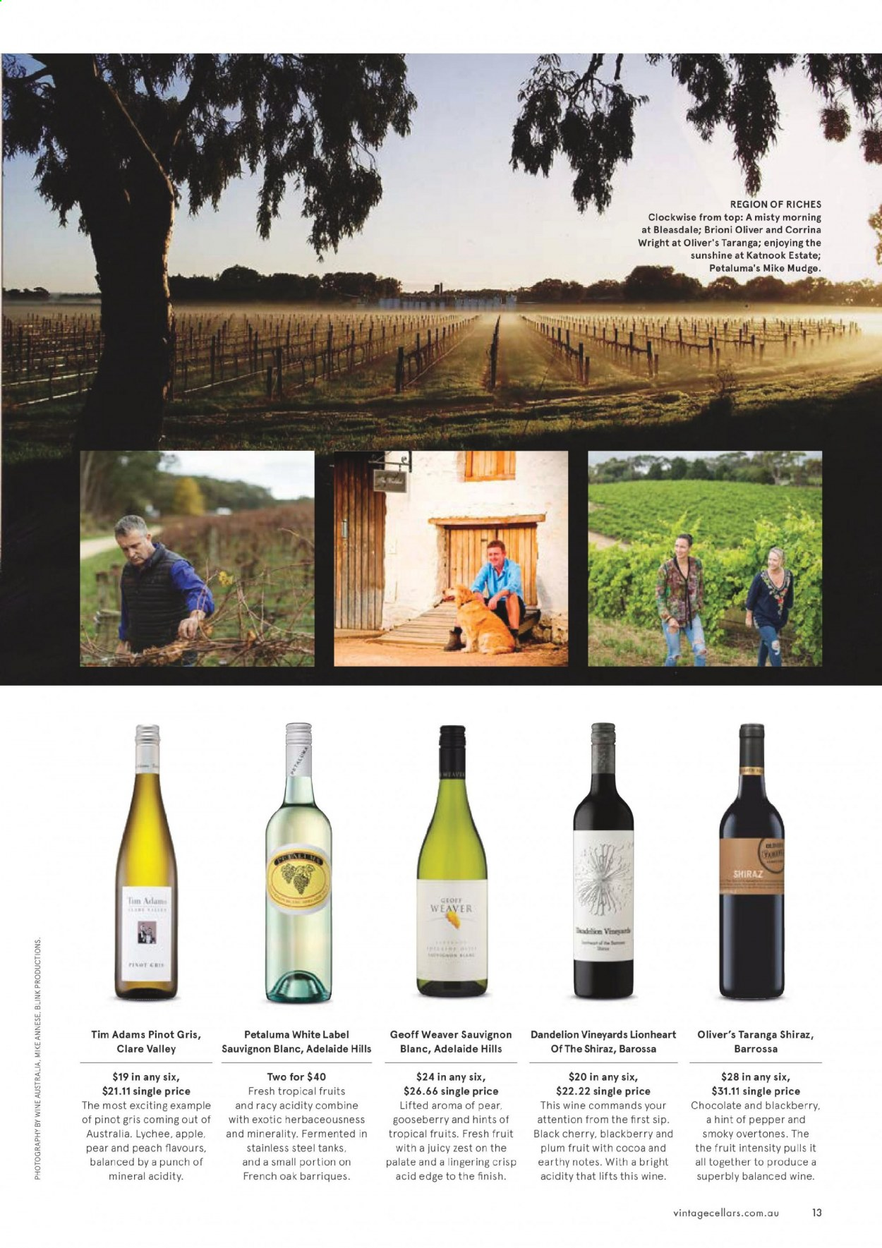 Vintage Cellars catalogue  - 1.7.2020 - 11.8.2020. Page 13.