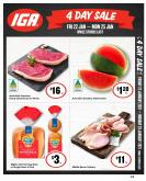 IGA Catalogue - 22.1.2021 - 25.1.2021.
