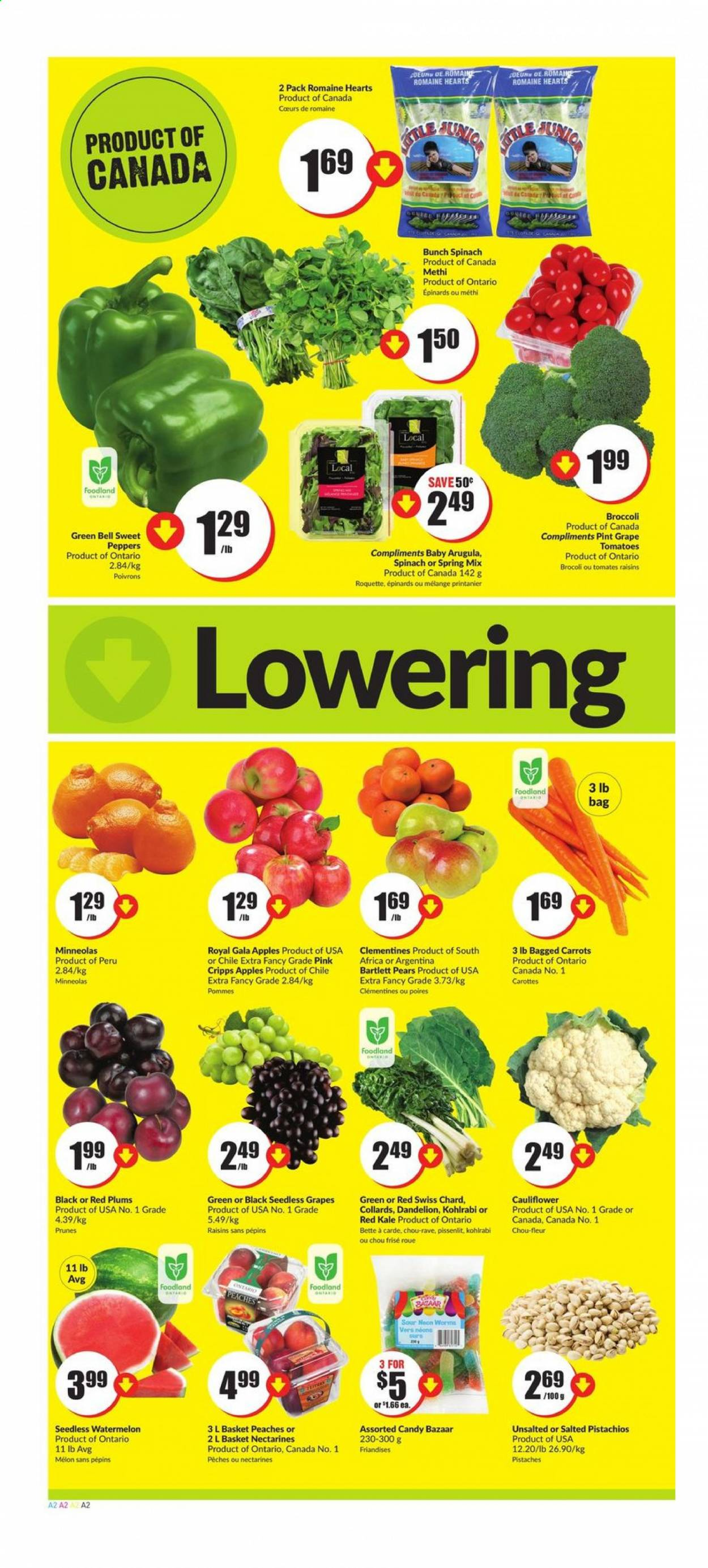 FreshCo. Flyer - August 13, 2020 - August 19, 2020 - Sales products - arugula, bag, bartlett pears, basket, broccoli, carrots, cauliflower, clémentines, gala apples, grapes, kohlrabi, nectarines, raisins, seedless grapes, spinach, tomatoes, watermelon, kale, plums, prunes, chard, peaches, pears, red plums, candy, melon, avg, tomates, pommes, brocoli, carotte, epinard, fleur, chou, chou-fleur, prune, poivrons, pissenlit, pêche, roquette, spa. Page 2.