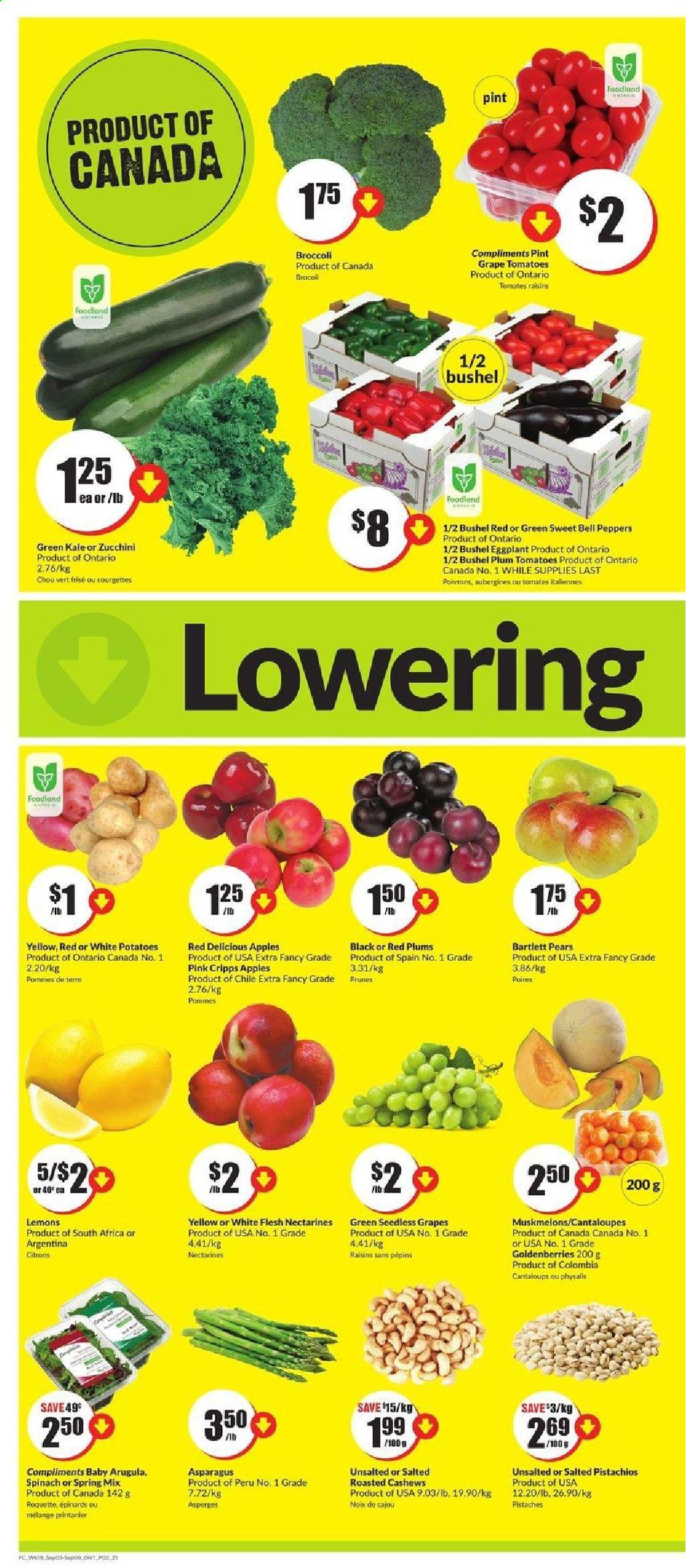 FreshCo. Flyer - September 03, 2020 - September 09, 2020 - Sales products - apples, arugula, asparagus, bartlett pears, bell peppers, broccoli, cantaloupe, cashews, eggplants, grapes, lemons, nectarines, raisins, red delicious, seedless grapes, spinach, tomatoes, zucchini, kale, plums, potatoes, prunes, pears, red plums, tomates, aubergine, brocoli, courgette, epinard, chou, prune, pommes de terre, roquette, spring, apple, peppers, red delicious apples, tomato. Page 2.