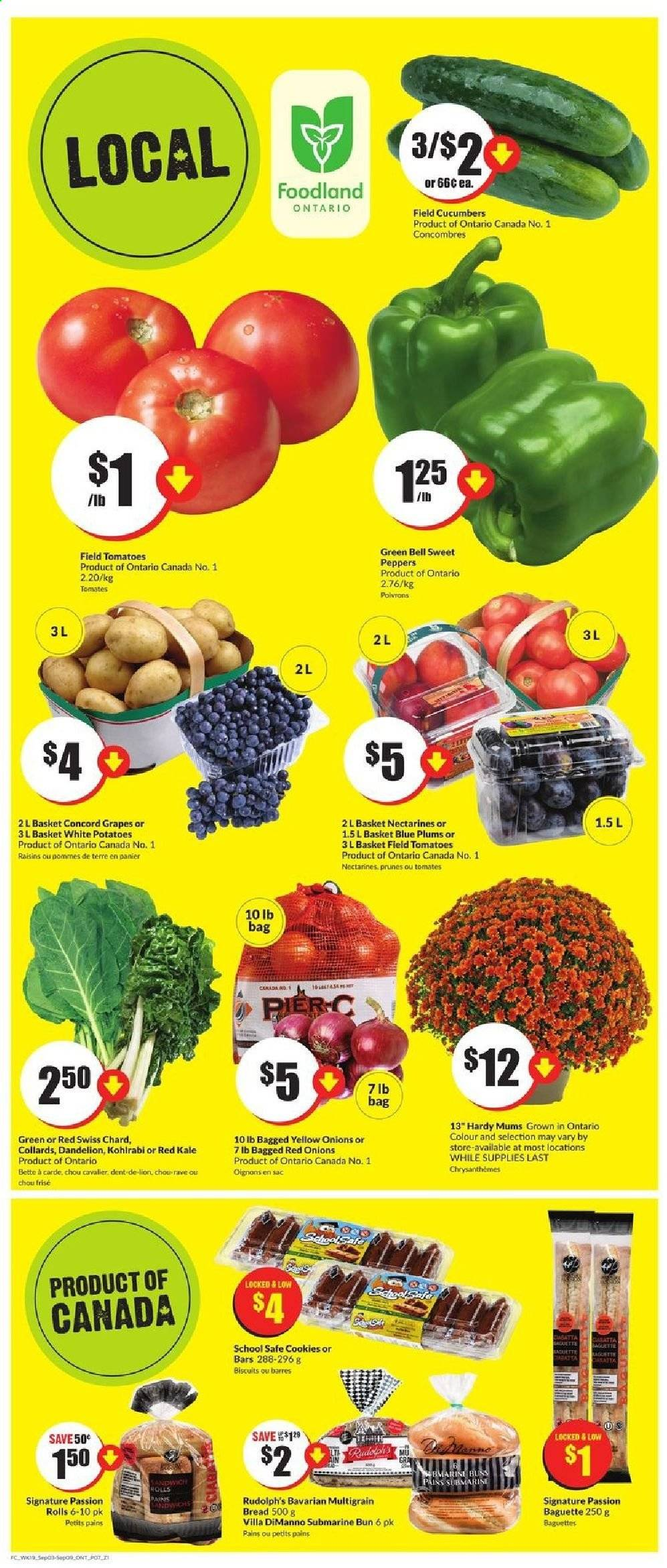 FreshCo. Flyer - September 03, 2020 - September 09, 2020 - Sales products - baguette, basket, biscuits, bread, cookies, cucumbers, grapes, kohlrabi, multigrain bread, nectarines, raisins, red onions, safe, tomatoes, yellow onions, kale, plums, potatoes, prunes, chard, onion, tomates, biscuit, cavalier, chou, prune, oignons, panier, sac, poivrons, pommes de terre, rolls, tomato, onions. Page 7.