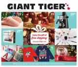 Giant Tiger Flyer - November 25, 2020 - December 08, 2020.