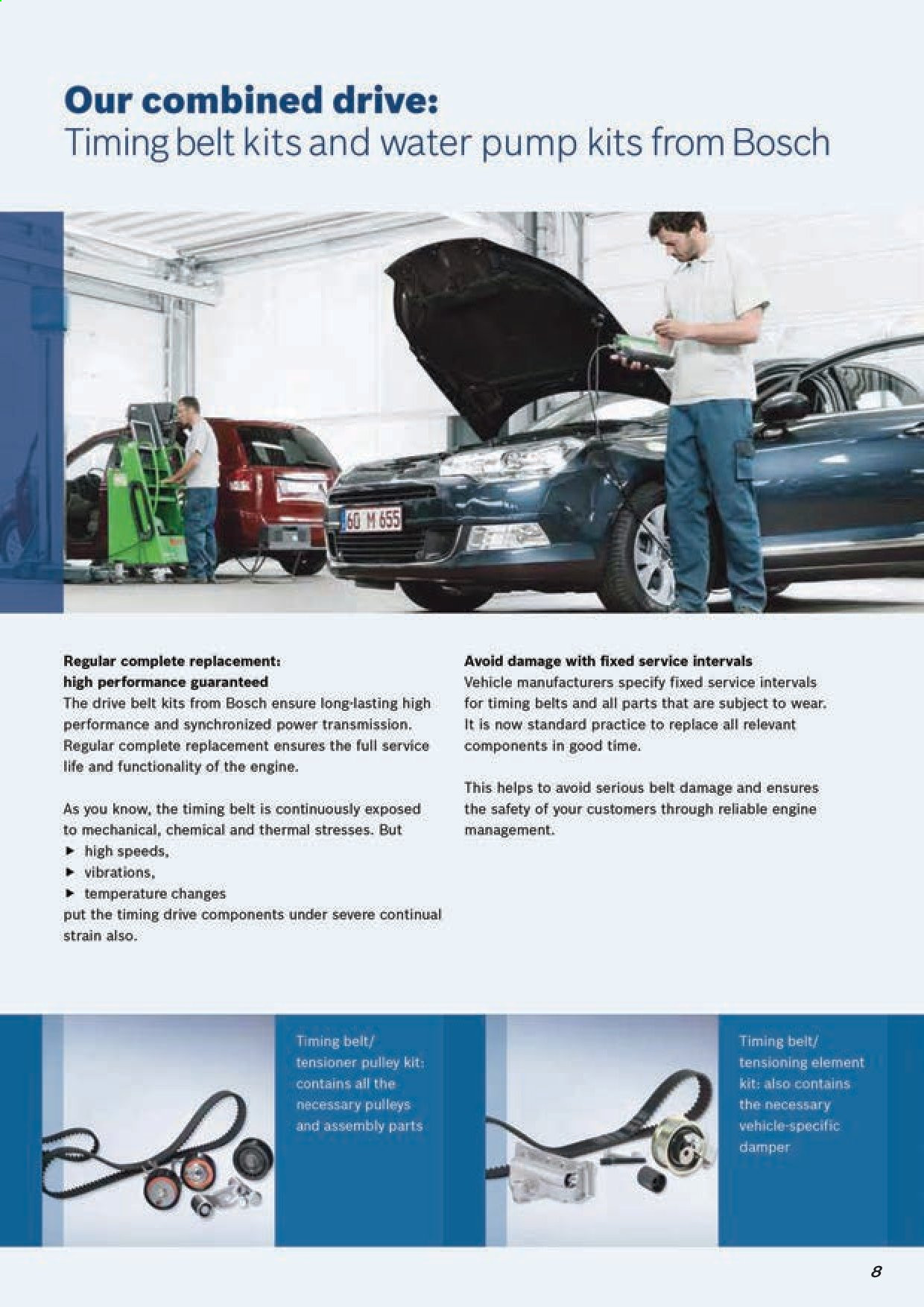 AutoZone catalogue . Page 10.