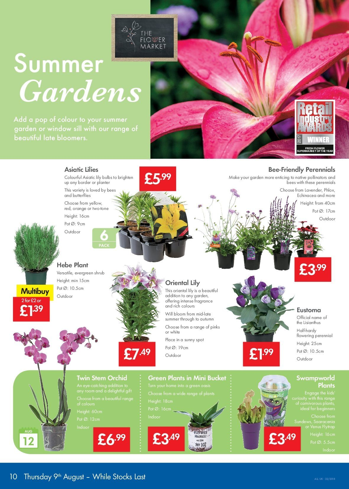 Lidl offer  - 9.8.2018 - 15.8.2018 - Sales products - bulb, fragrance, venus, pot. Page 10.