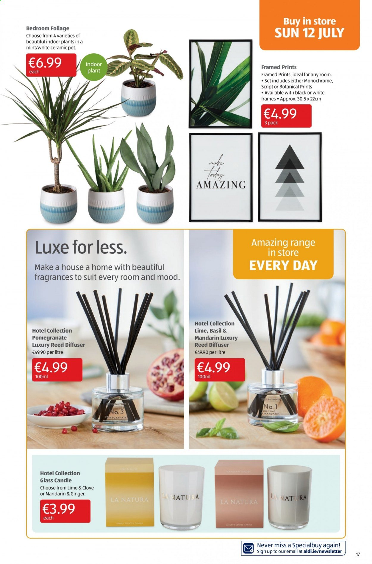 Aldi offer  - 9.7.2020 - 12.7.2020 - Sales products - basil, candle, diffuser, frame, ginger, glass, mint, suit, pot. Page 17.