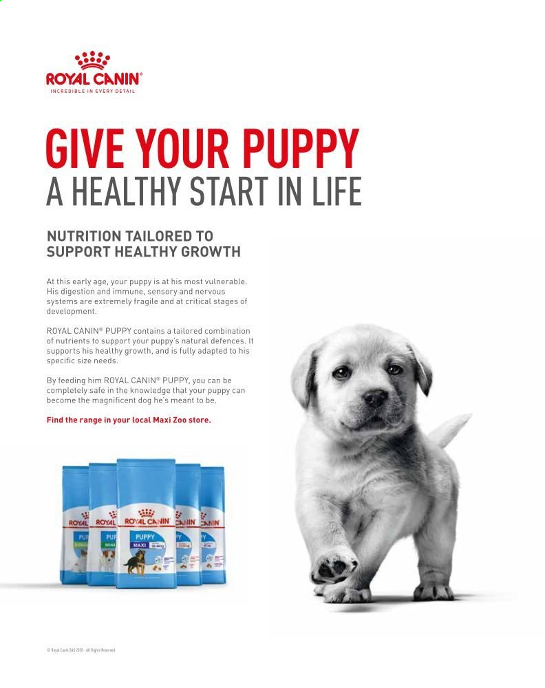 Maxi Zoo offer  - Sales products - royal canin. Page 2.
