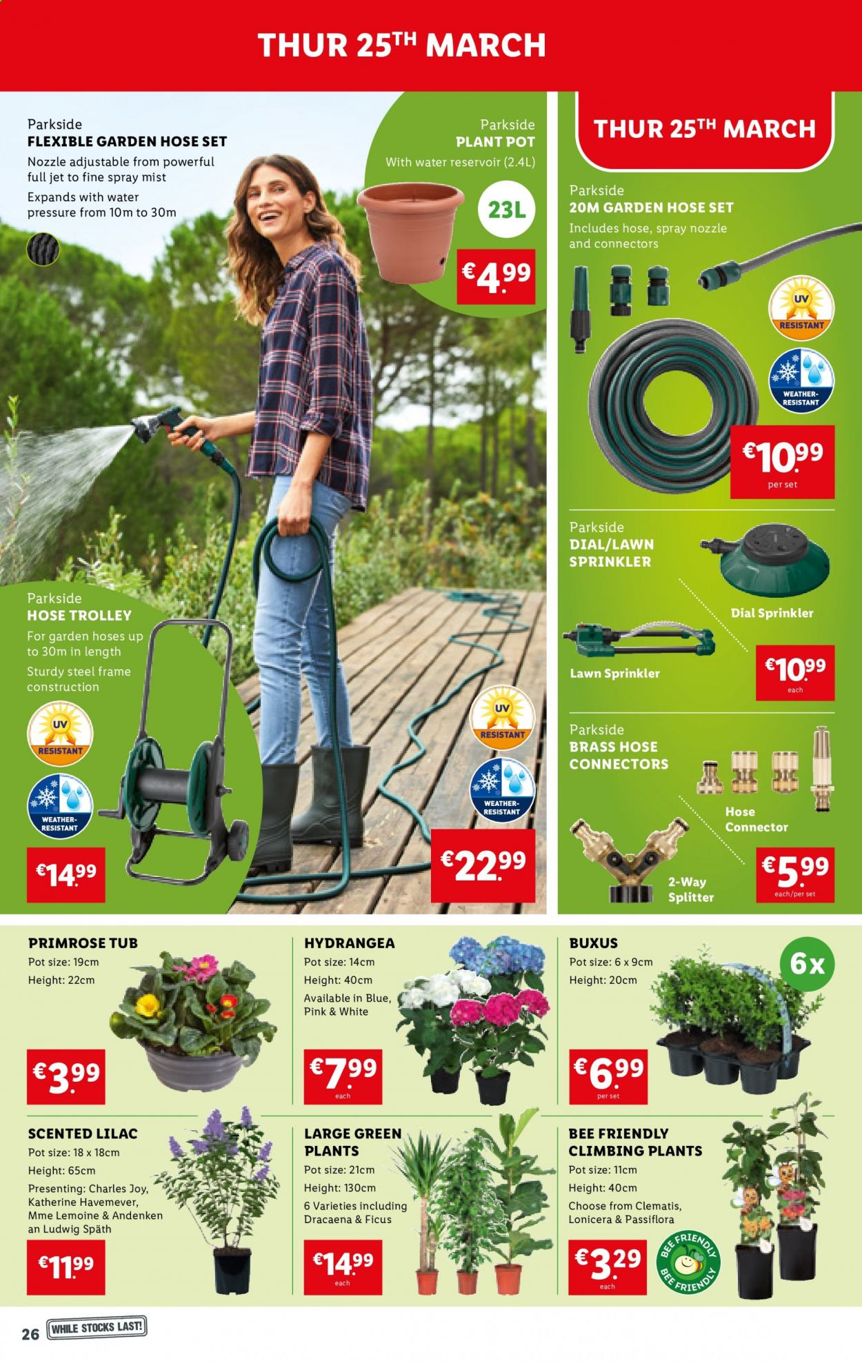 Lidl offer  - 25.3.2021 - 31.3.2021 - Sales products - Joy, Jet, Dial, trolley, pot, Parkside, primroses, plant, plant pot, garden hose, water. Page 26.