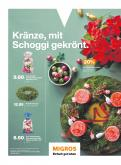 Catalogue Migros - 23.11.2020 - 29.11.2020.
