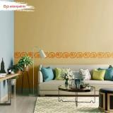 Asian Paints offer