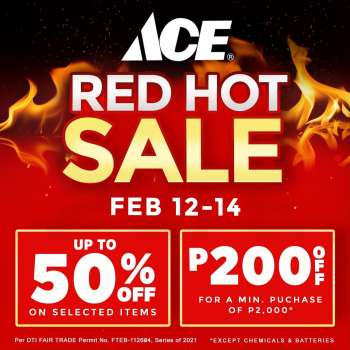 ACE Hardware offer  - 12.2.2021 - 14.2.2021.