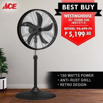 ACE Hardware offer .