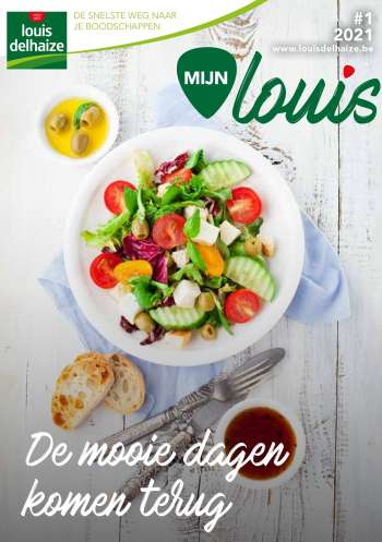 Catalogue Louis Delhaize.