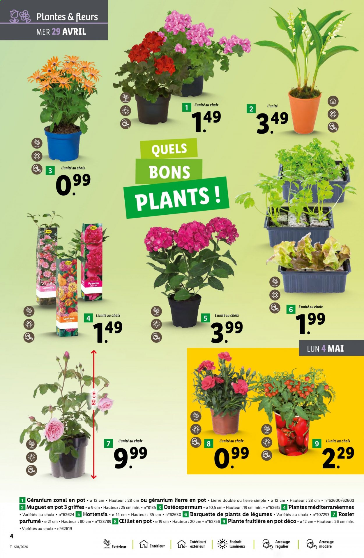 Catalogue Lidl - 29.04.2020 - 05.05.2020. Page 4.