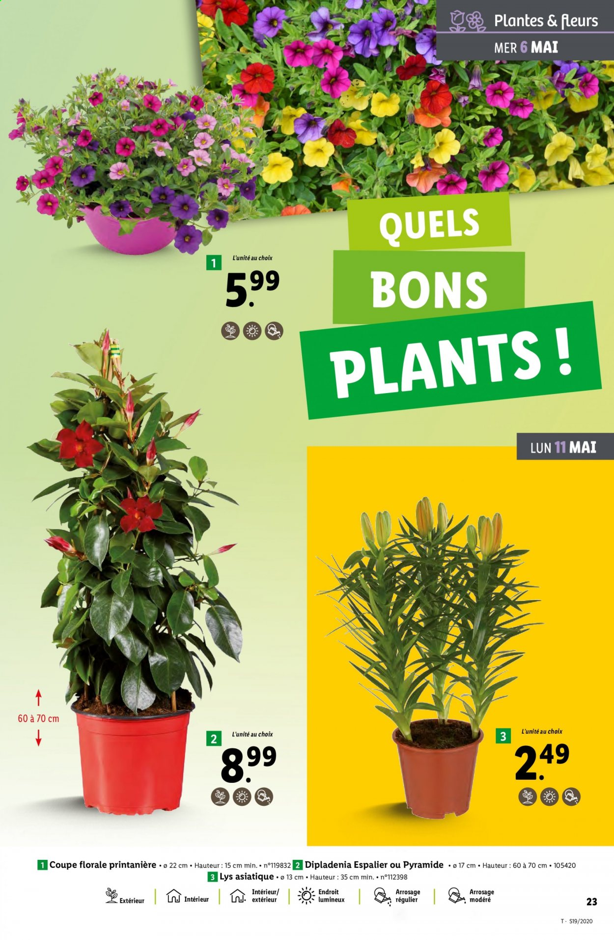 Catalogue Lidl - 06.05.2020 - 12.05.2020. Page 23.