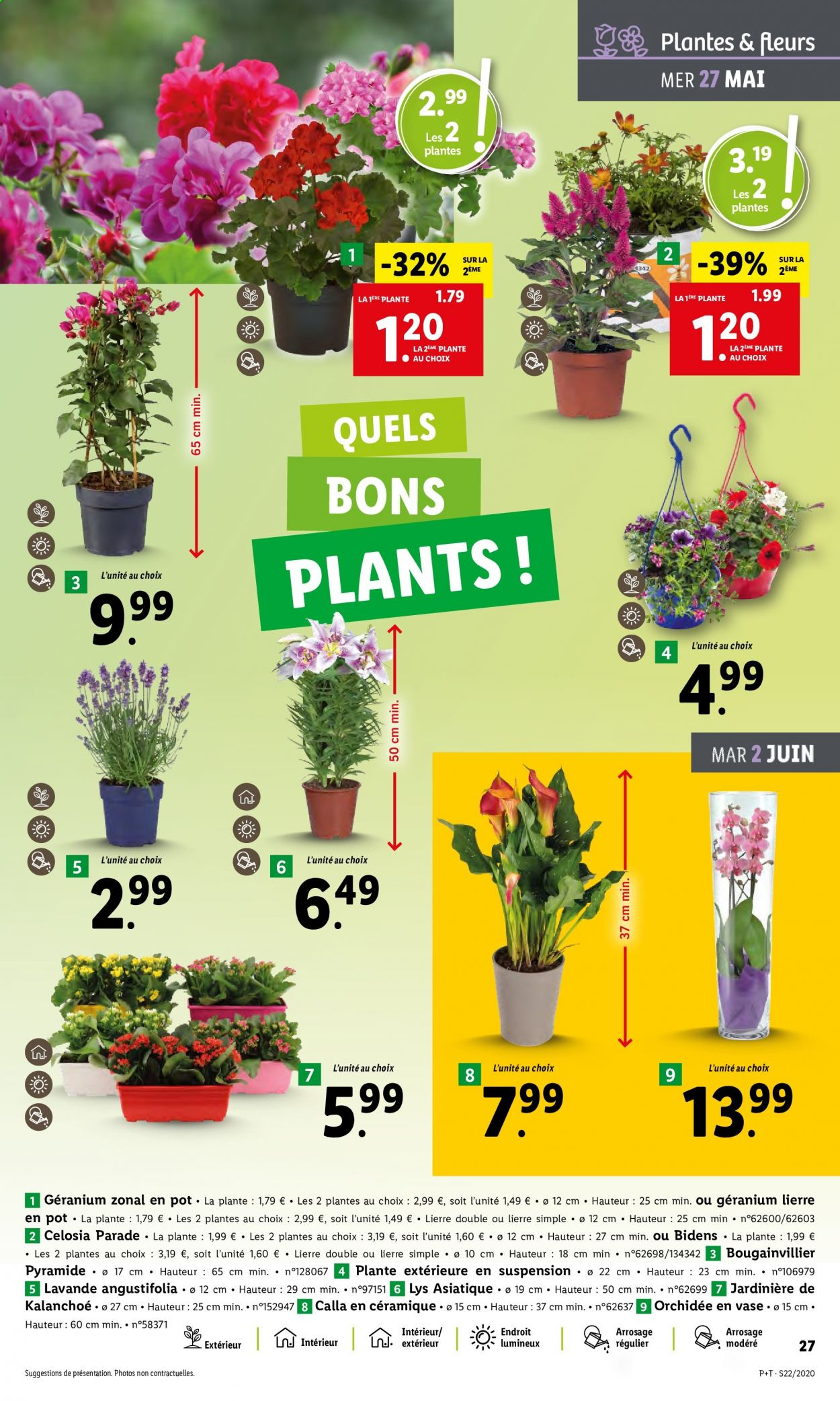 Catalogue Lidl - 27.05.2020 - 02.06.2020. Page 29.