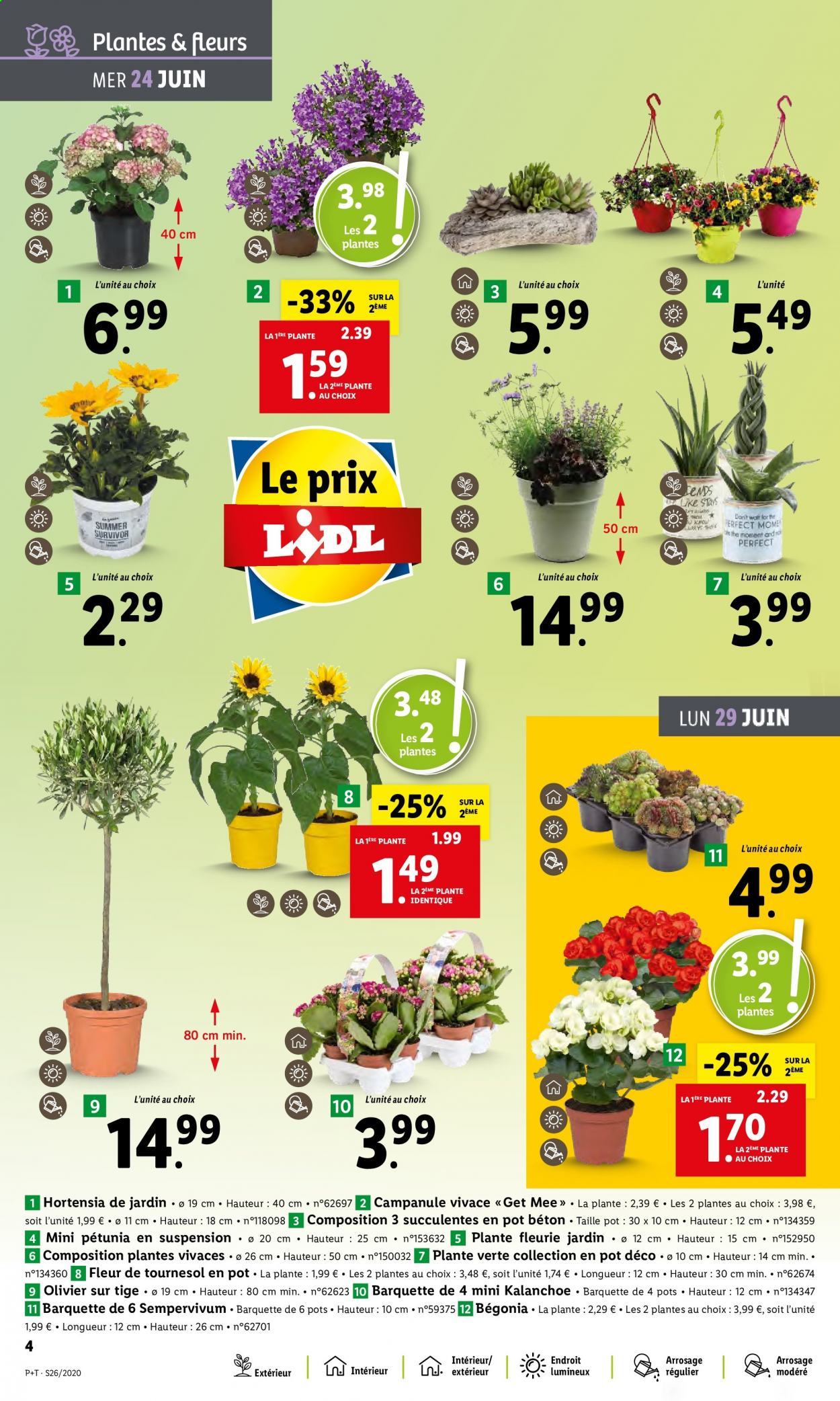 Catalogue Lidl - 24.06.2020 - 30.06.2020. Page 4.