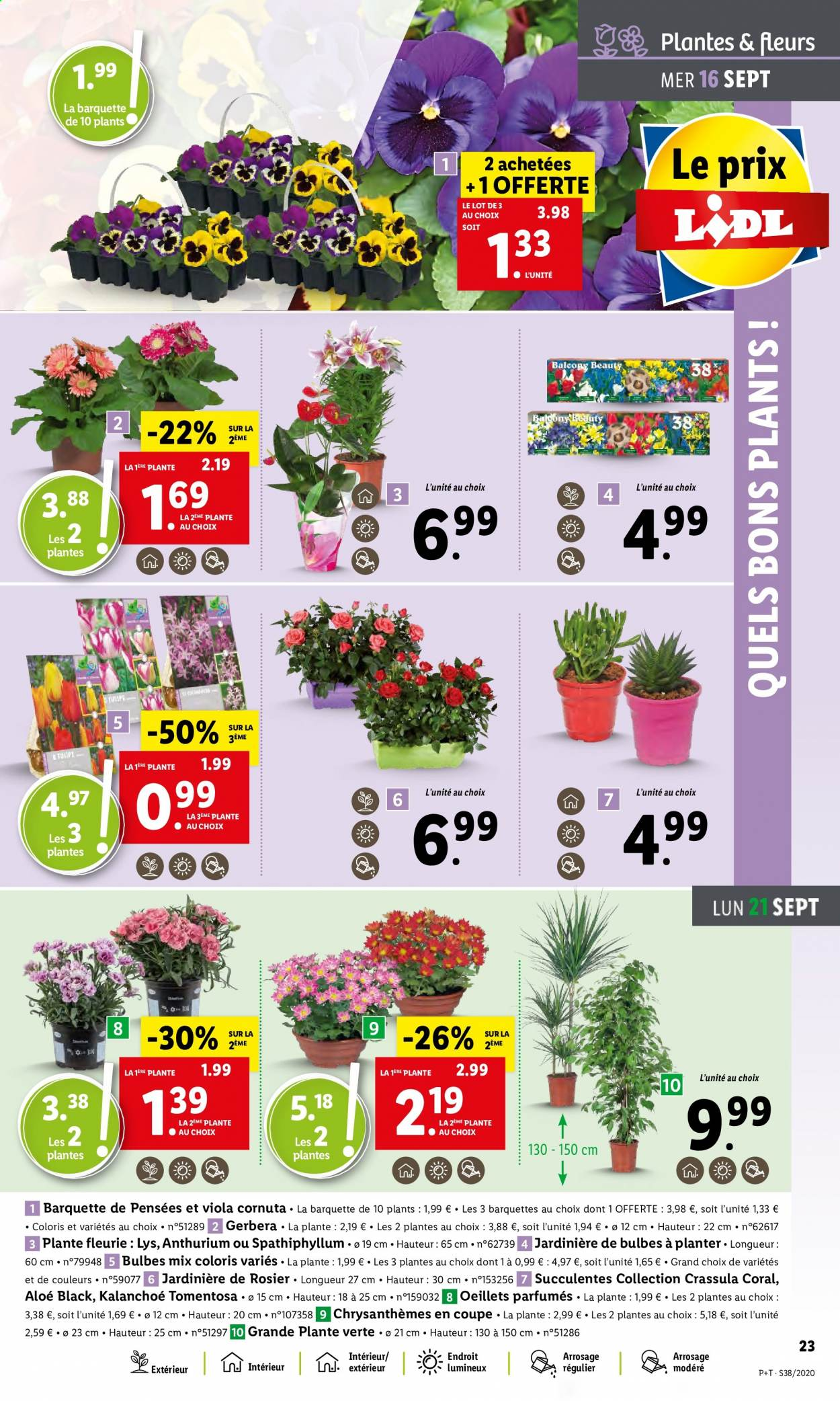 Catalogue Lidl - 16.09.2020 - 22.09.2020. Page 23.