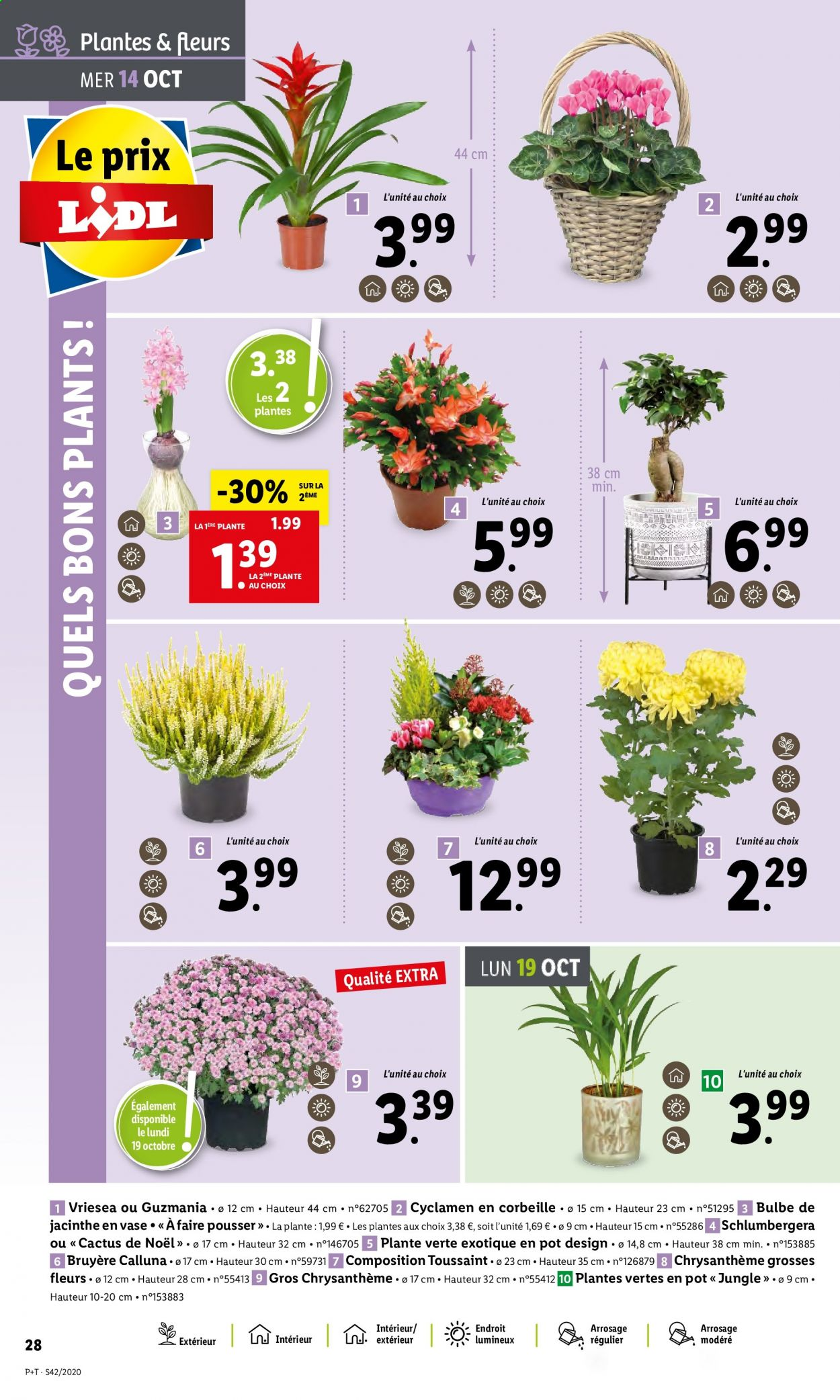 Catalogue Lidl - 14.10.2020 - 20.10.2020. Page 28.