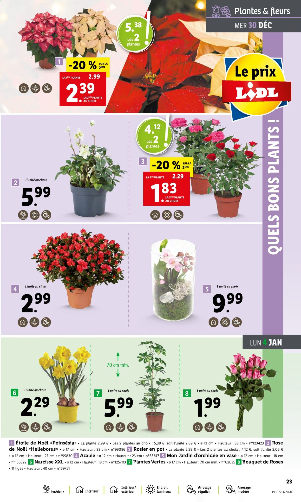 Catalogue Lidl - 30.12.2020 - 05.01.2021. Page 23.