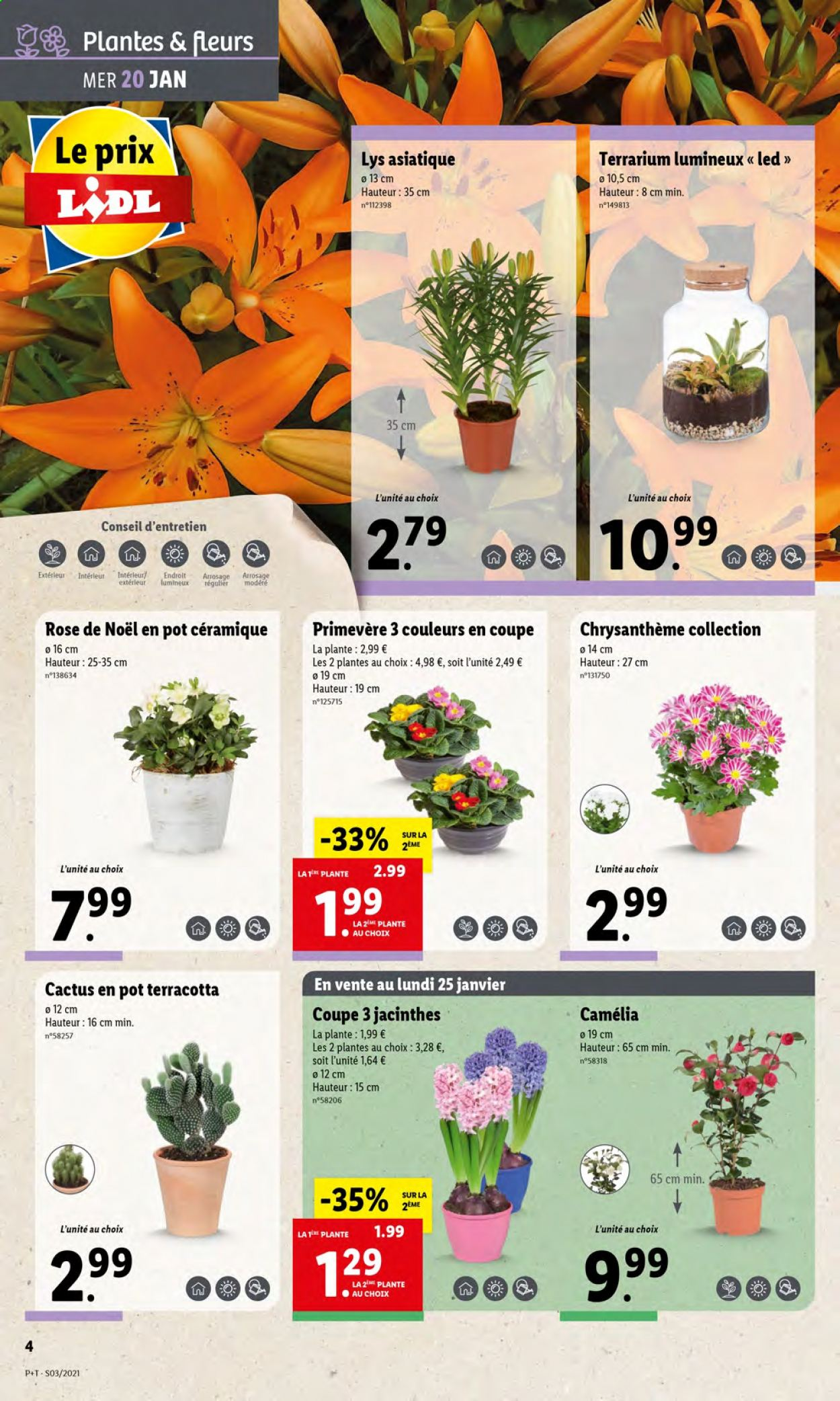 Catalogue Lidl - 20.01.2021 - 26.01.2021. Page 4.