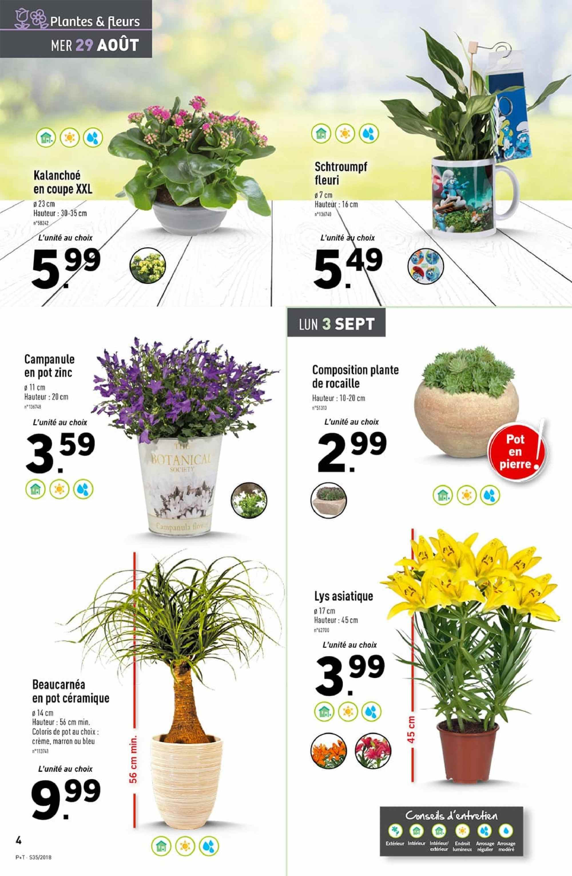 Catalogue Lidl - 29.08.2018 - 04.09.2018. Page 4.
