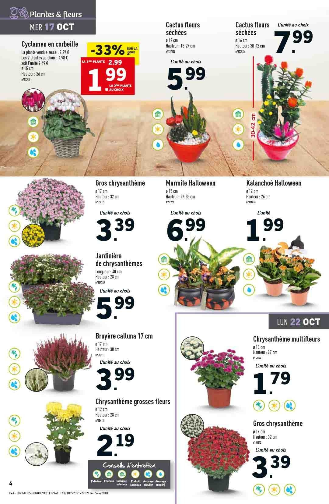 Catalogue Lidl - 17.10.2018 - 23.10.2018. Page 4.