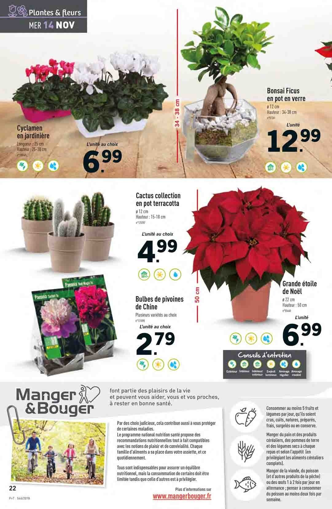 Catalogue Lidl - 14.11.2018 - 20.11.2018. Page 22.