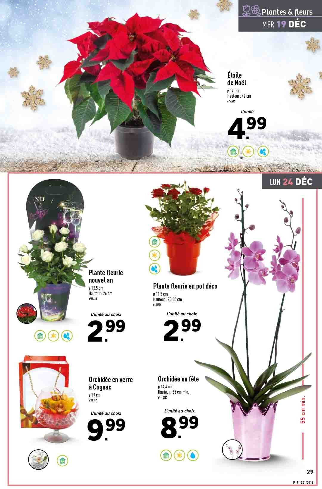 Catalogue Lidl - 19.12.2018 - 24.12.2018. Page 29.