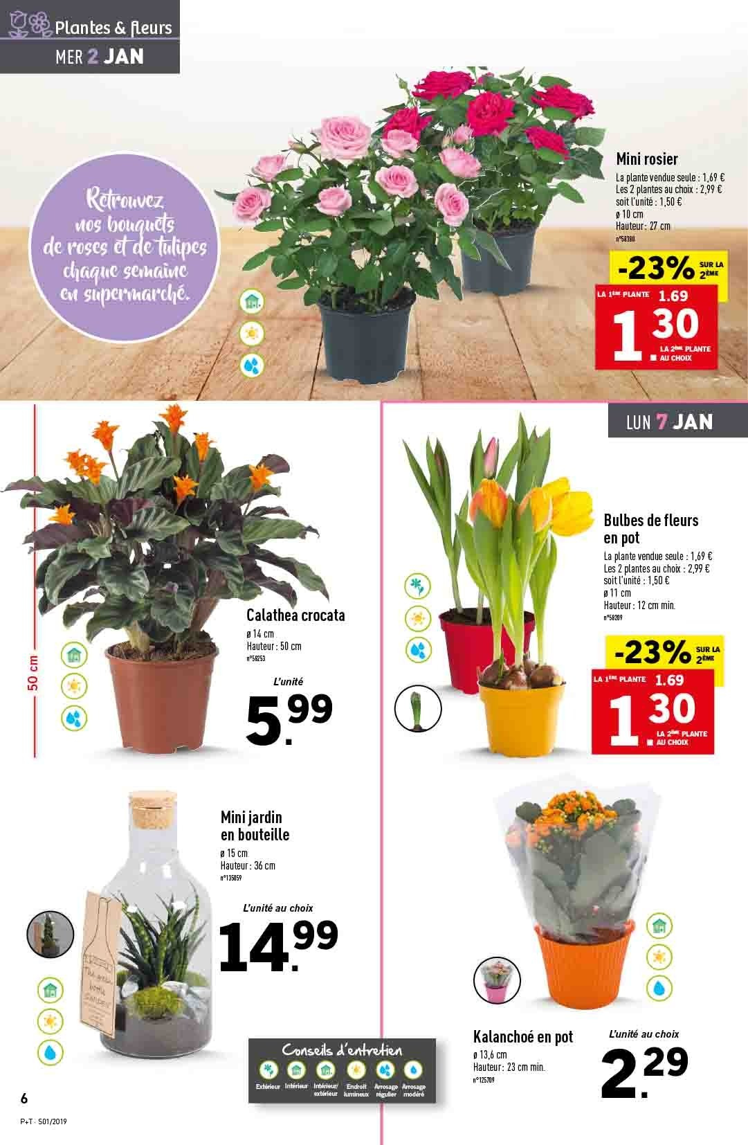 Catalogue Lidl - 02.01.2019 - 08.01.2019. Page 6.
