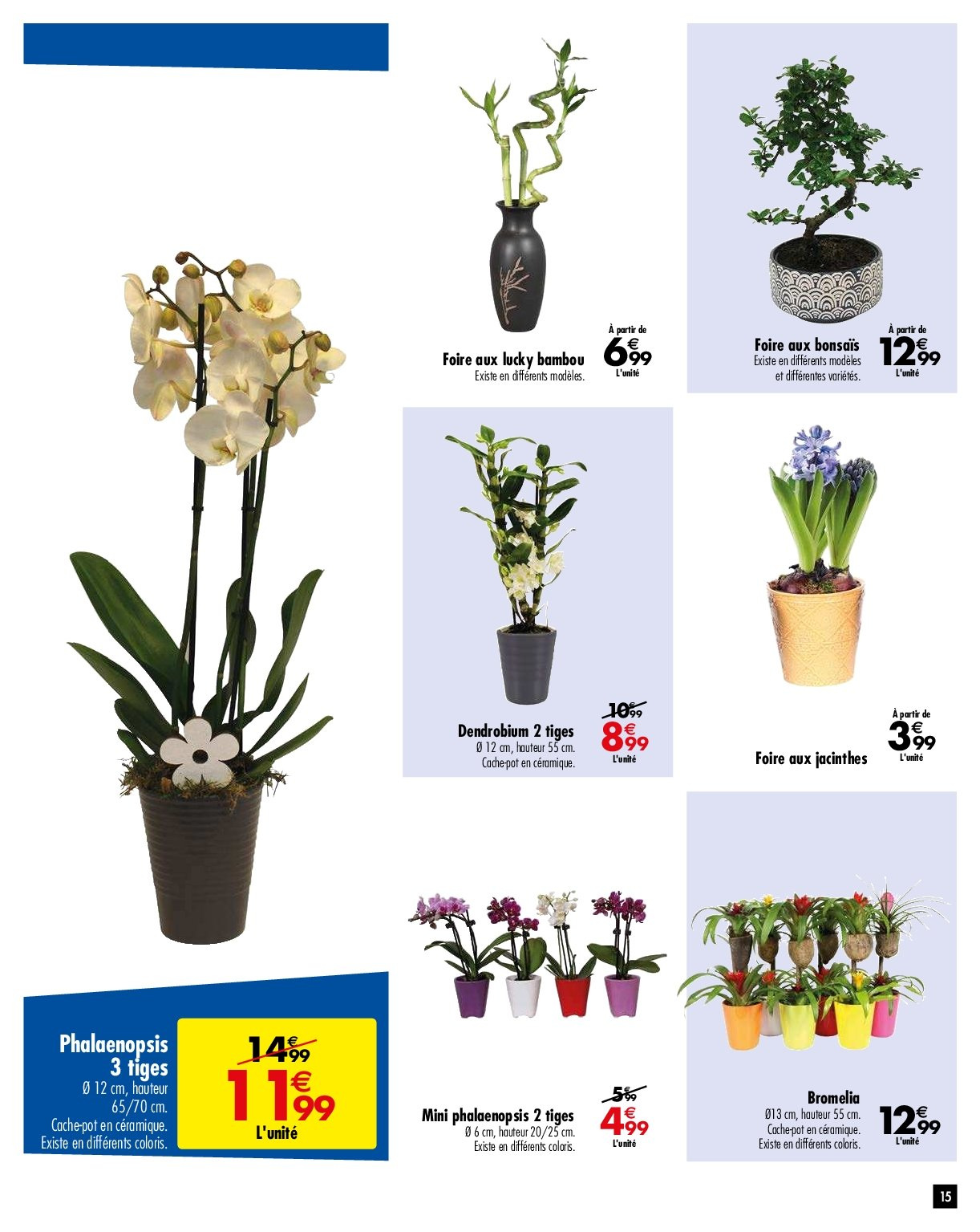Catalogue Carrefour - 29.01.2019 - 04.02.2019. Page 15.