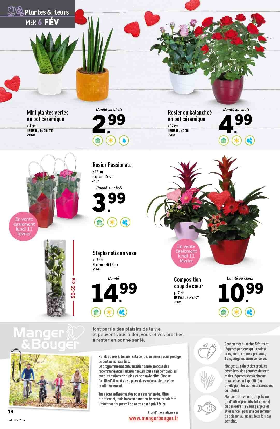 Catalogue Lidl - 06.02.2019 - 12.02.2019. Page 20.