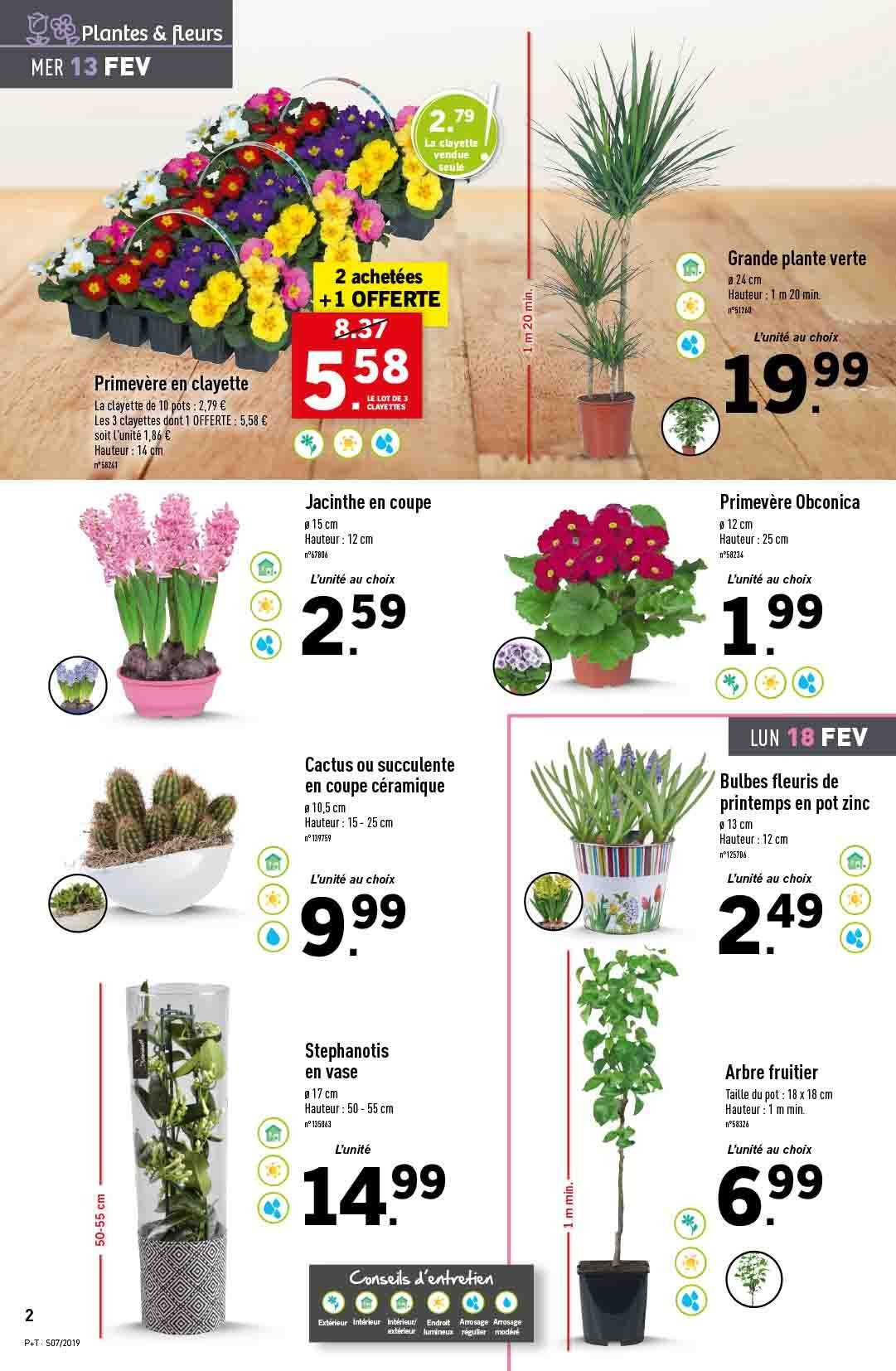 Catalogue Lidl - 13.02.2019 - 19.02.2019. Page 2.