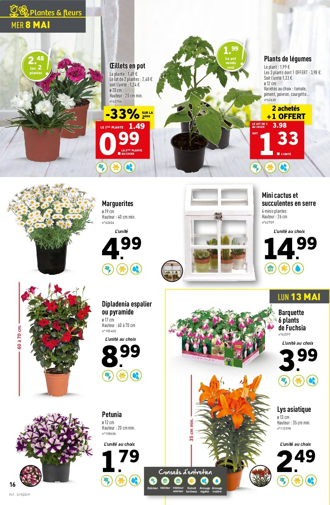 Catalogue Lidl - 08.05.2019 - 14.05.2019. Page 16.