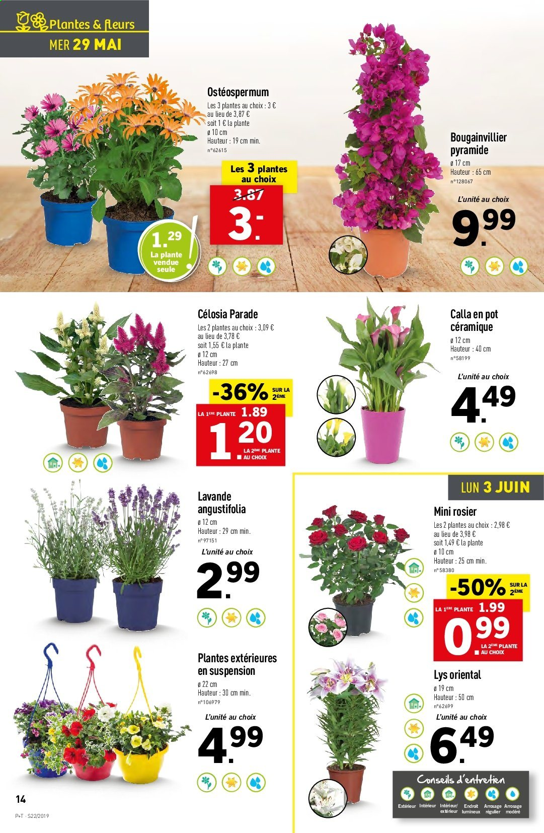 Catalogue Lidl - 29.05.2019 - 04.06.2019. Page 14.