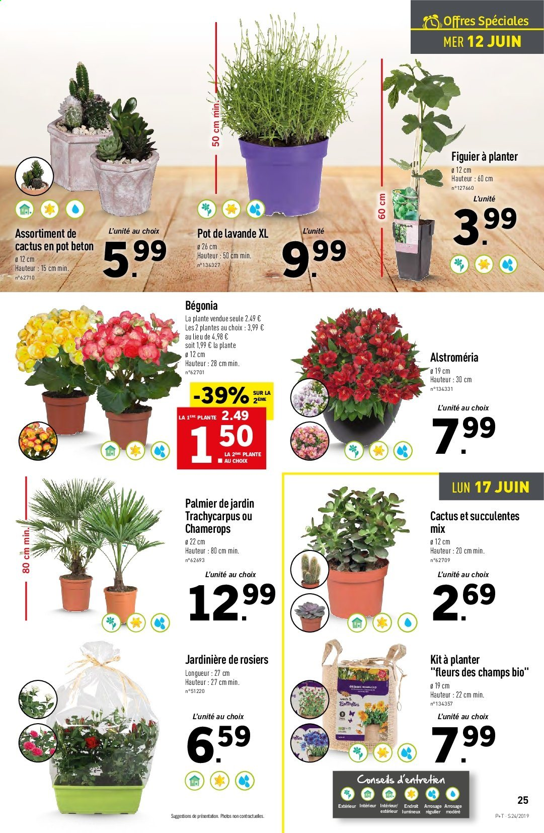 Catalogue Lidl - 12.06.2019 - 18.06.2019. Page 27.
