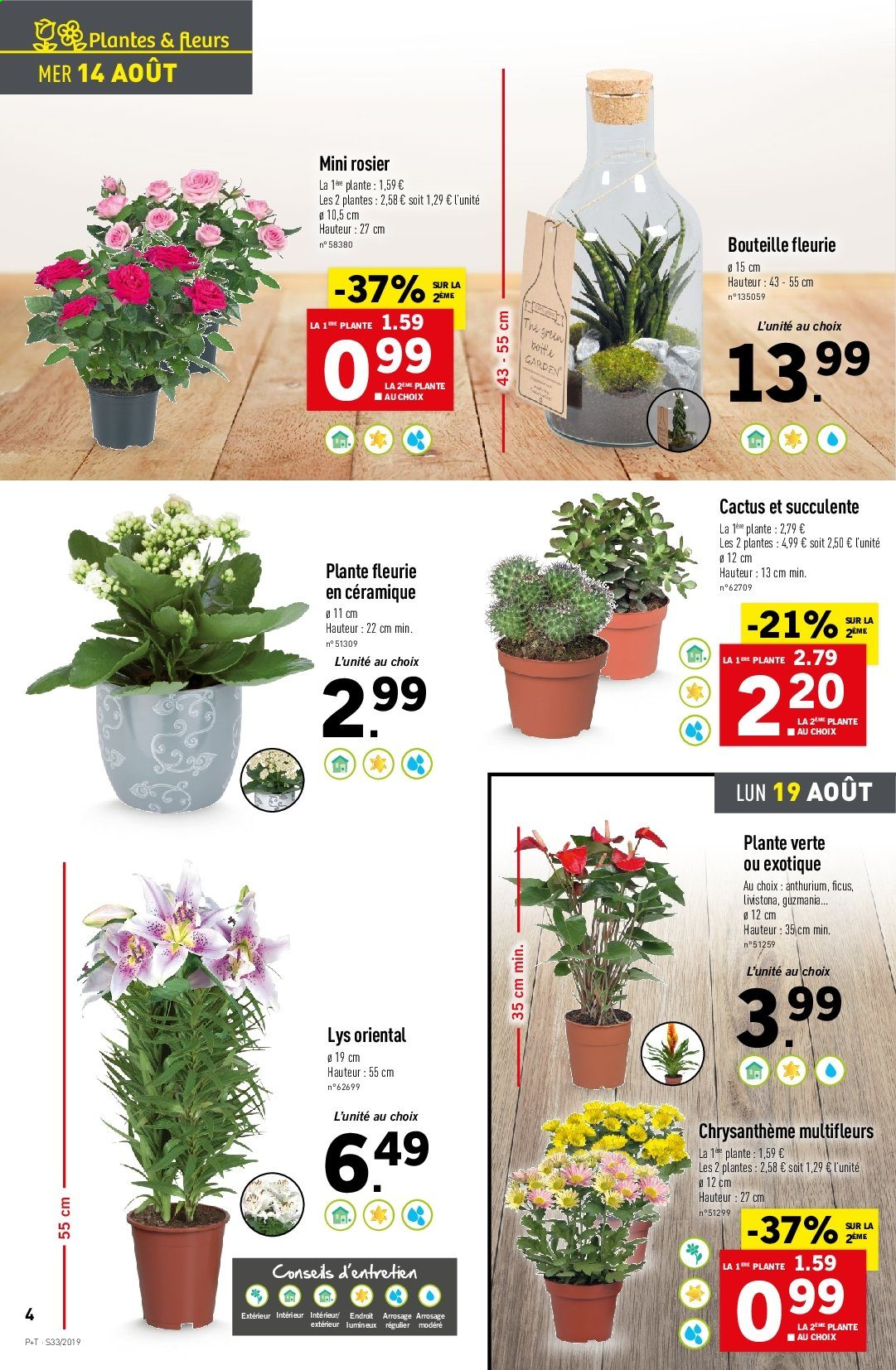 Catalogue Lidl - 14.08.2019 - 20.08.2019. Page 4.