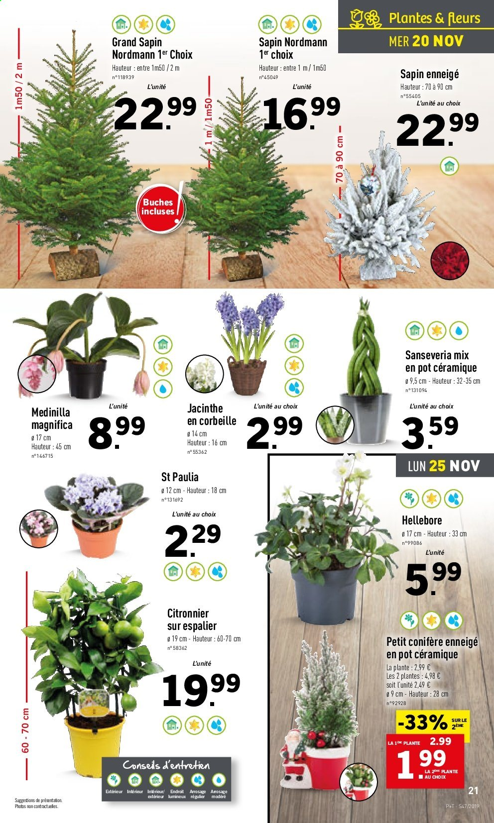 Catalogue Lidl - 20.11.2019 - 26.11.2019. Page 21.