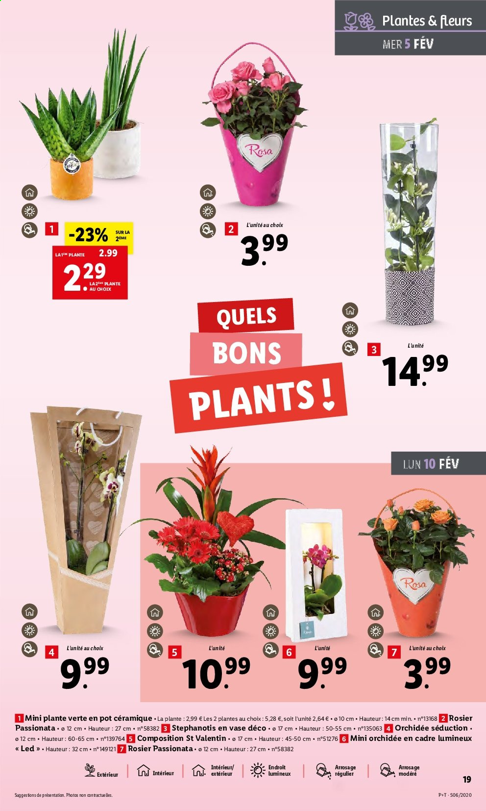 Catalogue Lidl - 05.02.2020 - 11.02.2020. Page 19.
