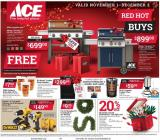 ACE Hardware Flyer - 11.01.2019 - 12.02.2019.
