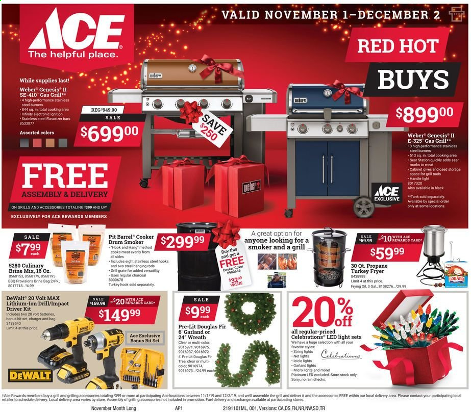 ACE Hardware Flyer  - 11.01.2019 - 12.02.2019. Page 1.