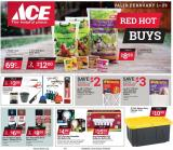 ACE Hardware Flyer - 02.01.2020 - 02.29.2020.