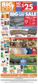 Big Lots Flyer - 05.16.2020 - 05.30.2020.
