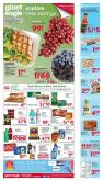 Giant Eagle Flyer - 07.23.2020 - 07.29.2020.