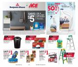 ACE Hardware Flyer - 12.26.2020 - 01.31.2021.