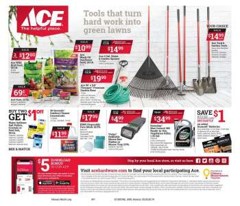 ACE Hardware Flyer - 02.01.2021 - 02.28.2021.