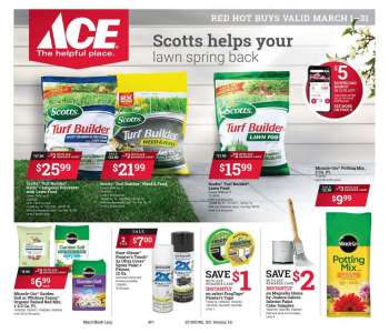 ACE Hardware Flyer - 03.01.2021 - 03.31.2021.