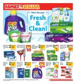 Family Dollar Flyer - 12.31.2018 - 01.29.2019 - Sales products - cascade, febreze, kleenex, mouse, toilet, tomcat, wipes, pan, glue.